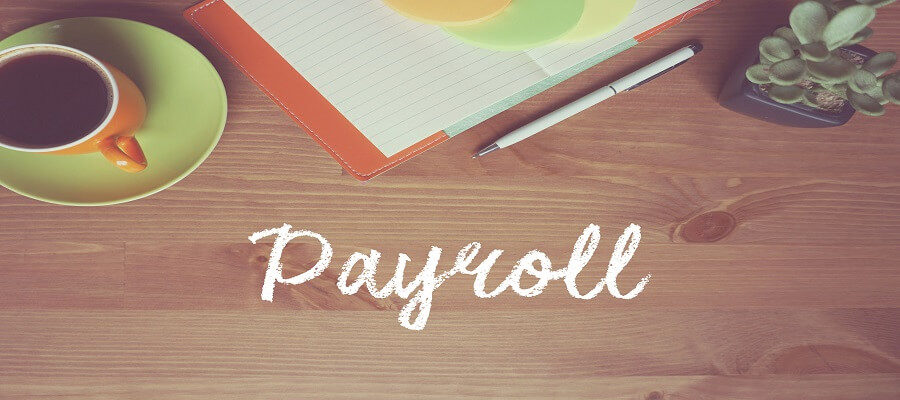 Streamline Your Payroll With Payroll Software in Saudi Arabia Solutions